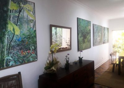 ateliê / galeria Alexandre Luiz