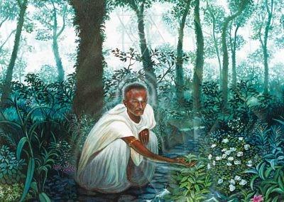 Harmonia com a Natureza - 1994 óleo sobre tela - 90 x 70 cm